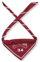 松山第34団 スカーフ